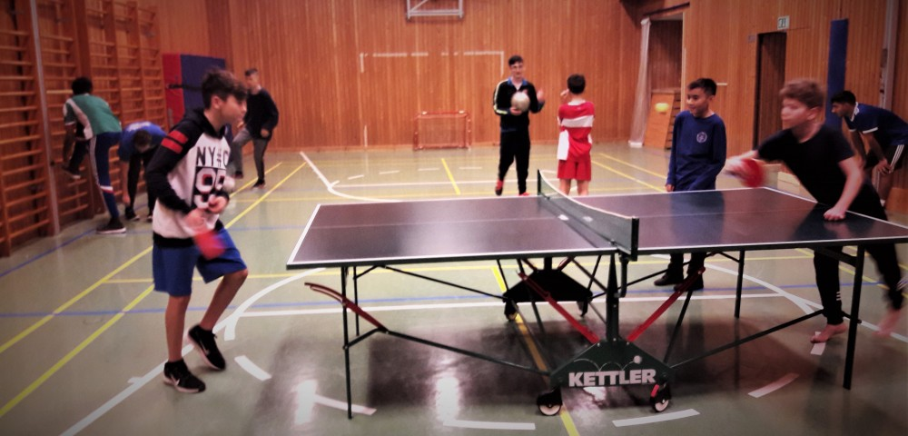 Tischtennis Kauer